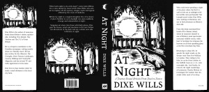 A04849_AtNight_PrePubProof_CoverFlaps.indd