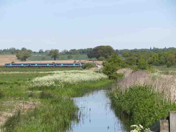 Buckenham, Norfolk - train speeds through Buckenham station, just visible through trees